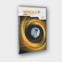 Produktbild ProDAD Mercalli 4 SAL (Standalone)